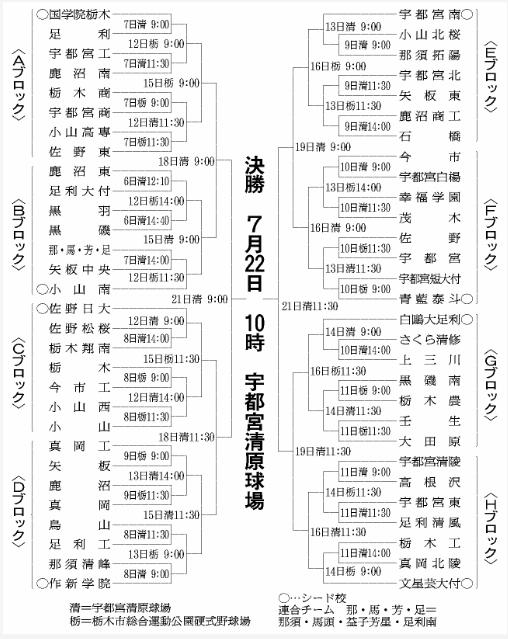 第100回全国高等学校野球選手権記念大会・栃木