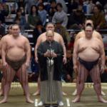 平成31年・大相撲初場所初日からの展望