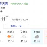12月2日なのに静岡では....