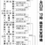 第100回全国高校野球選手権記念大会の南埼玉
