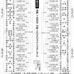 第100回全国高校野球選手権記念千葉大会