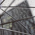 篠突く雨に起こされた梅雨ド真ん中の朝