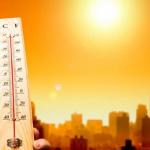 2020年の5月は、どうやら高温傾向らしいです。